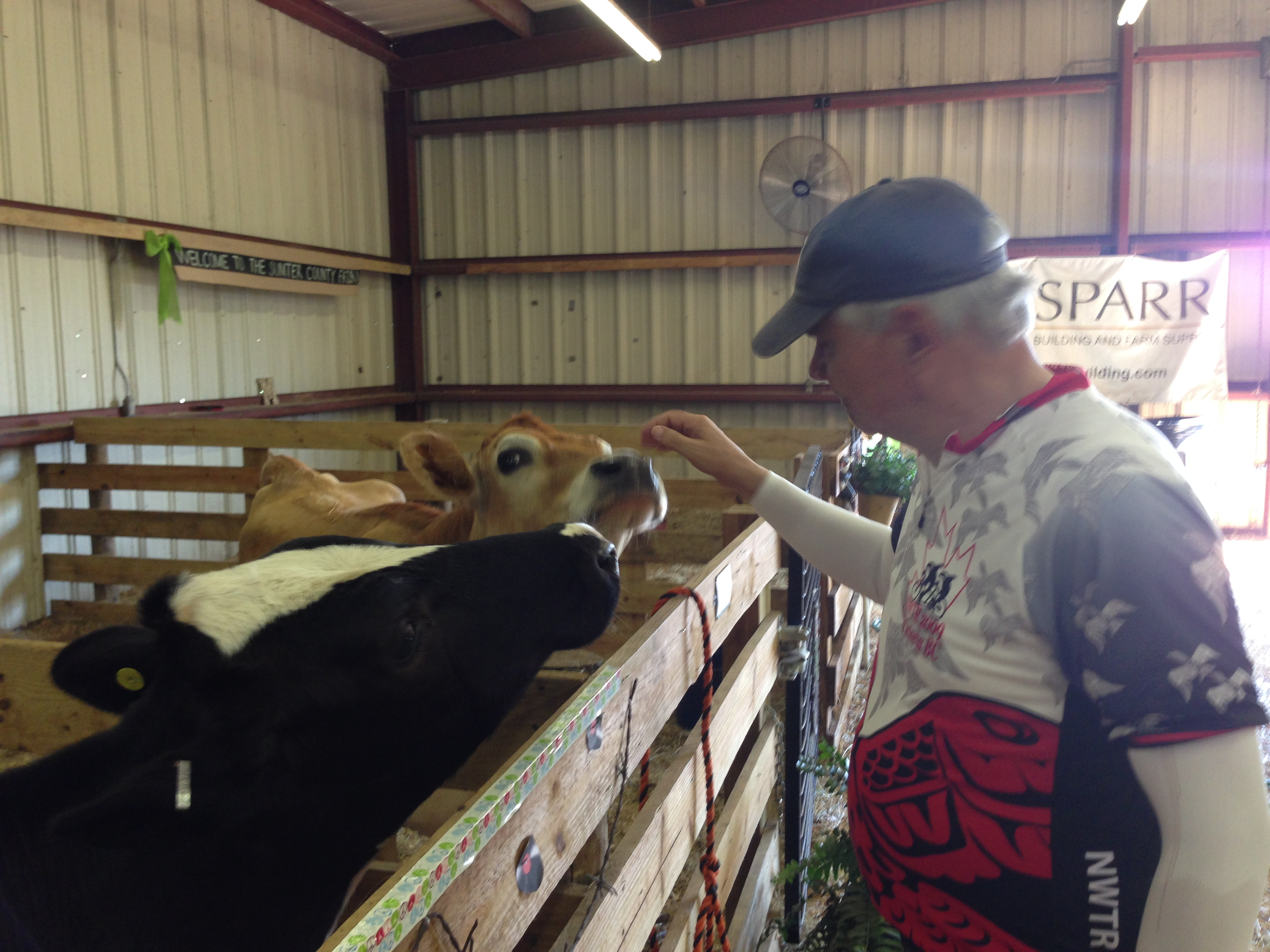 While the Fair wasn't yet open, we could view the 4H animals.